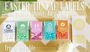 Download labels, print and attach to TicTacs